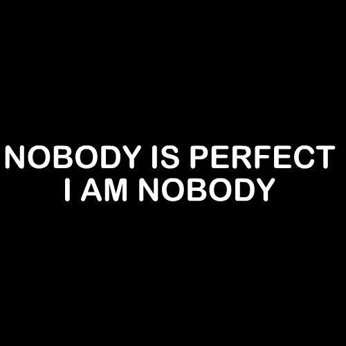 Smešna majica nobody is perfect i am nobody