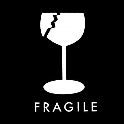 Smešna majica fragile
