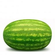 Majica za nosečnice lubenica